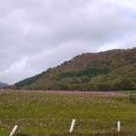 紅葉の蒜山