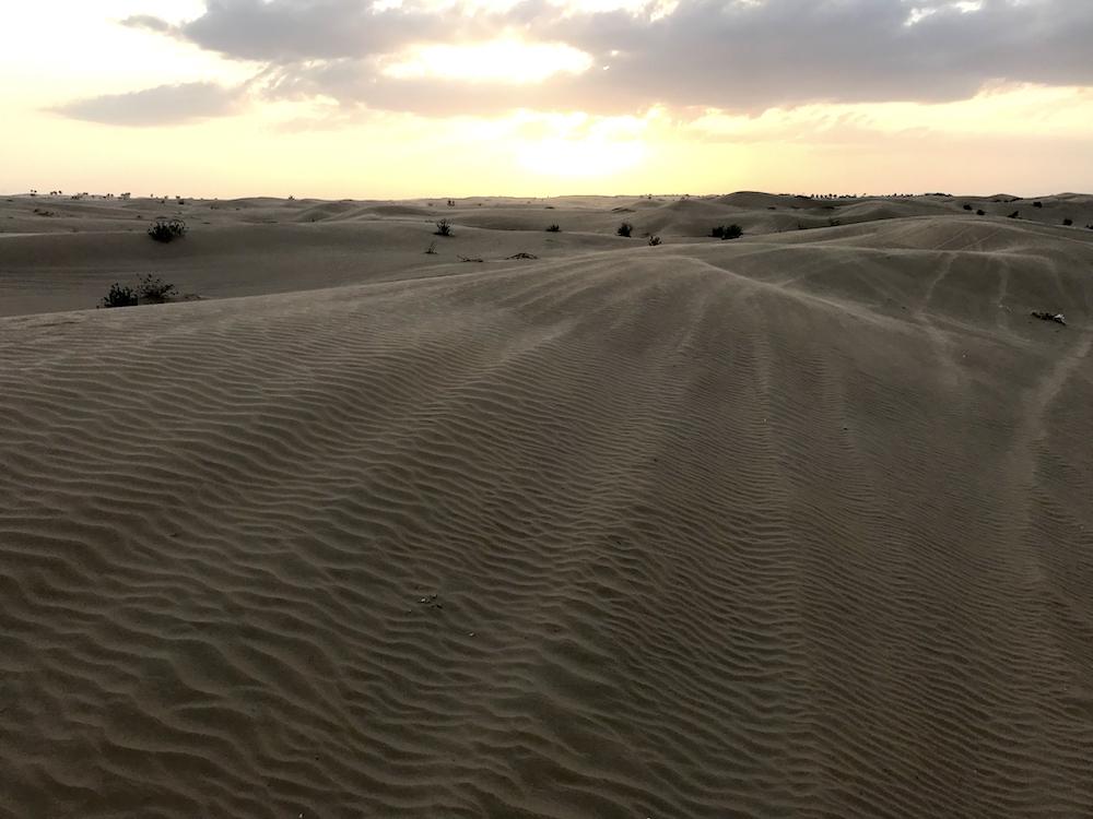 ドバイ日帰り砂漠ツアー